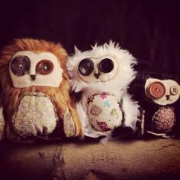 owls toxic